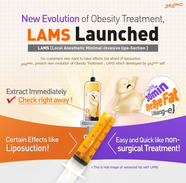 C-1 LAMS [Local Anesthetic Minimal-invasive Liposuction] image 1